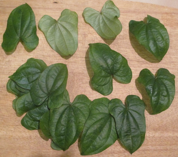 Dioscorea polystachya green leaves in kitchen