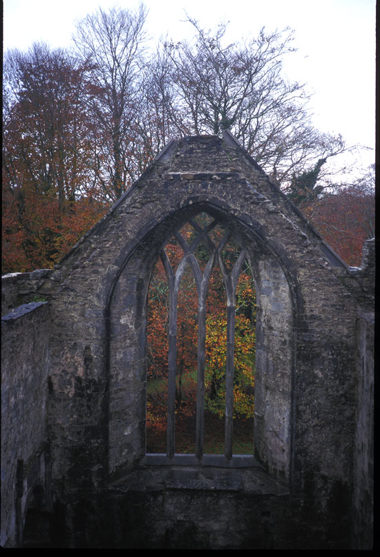 Muckross Abbey Nov. 1998